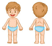 Boy body parts. Illustration of young boy front and back Stock Images
