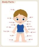 Boy body parts Stock Image