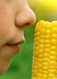 Boy with boiled gold corn Stock Photography