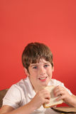 Boy with bologna sandwich vert Royalty Free Stock Photography