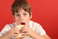 Boy with bologna sandwich vert royalty free stock photos