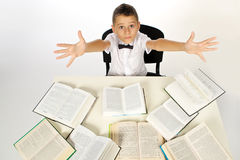 Boy and books Stock Photography