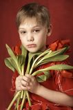 Boy with bouquet Royalty Free Stock Photography