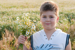 Boy with  bouquet of daisies in a field Royalty Free Stock Photos
