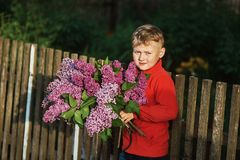The boy holds a bouquet of lilacs. A boy with a bouquet of lilacs Stock Photography