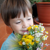 Boy with the bouquet of wildflowers Stock Photos