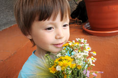 Boy with the bouquet of wildflowers Stock Images