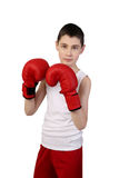 Boy boxer. Boy in sleeveless shirt and boxing gloves isolated on white background - young boxer stock images
