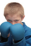 Boy with boxing gloves. Royalty Free Stock Photos