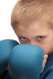 Boy with boxing gloves. Stock Photos