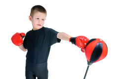 Boy in Boxing gloves Royalty Free Stock Photo