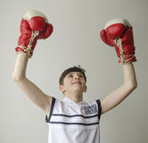Boy in boxing gloves with raised hands in victory gesture Royalty Free Stock Photography