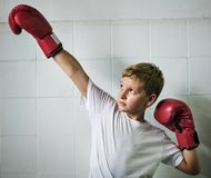 Boy Boxing Victory Confidence Posing Winning Concept Royalty Free Stock Photography