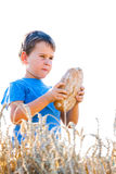 Boy with the bread in grain Royalty Free Stock Images
