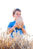 Boy with the bread in grain Stock Photo