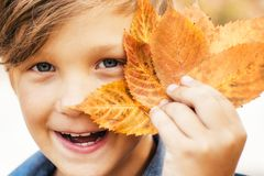 Boy on a breeze in an autumn village. Autumn child with autumnal mood. Hello Autumn and leaf fall Dreams. Autumn is a. Beautiful and colourful time of year royalty free stock images