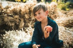 Boy on a breeze in an autumn village. Autumn kids with autumnal mood. Autumn time for kids in farm. Healthy lifestyle. Children stock image