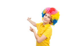 The boy in the bright multi-colored wig. Isolated on white background Royalty Free Stock Image
