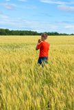The boy in a bright T-shirt runs along the yellow field where ears of grain grow, the grain against the blue sky, the rear view. Warm, summer day stock image
