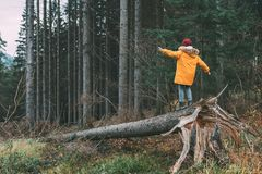 Boy in bright yellow parka puffer jacket walks in pine forest stock photo