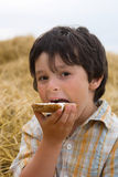 The boy  with broad on hay Royalty Free Stock Images