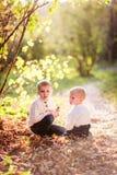 Boy brother children under a bush golden autumn Stock Images