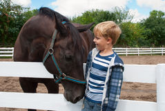 Boy with brown horse. Smiling boy meets with the brown horse Royalty Free Stock Photo
