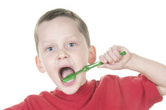 Boy brushing Stock Image