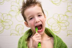The boy is brushing his teeth Stock Photography