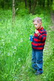 Boy and bubbles Royalty Free Stock Image