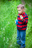 Boy and bubbles Royalty Free Stock Photo