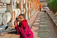 Boy from the buddhist monastery play near the Temp Royalty Free Stock Photos
