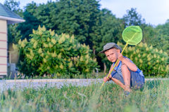 Boy with Bug Net Crouching in Long Grass on Lawn. Portrait of Serious Young Boy with Bug Net Crouching in Long Grass on Lawn Outdoors in Summer Royalty Free Stock Image