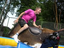 Boy on bull simulator Stock Image