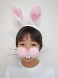 Boy in bunny ears. Boy wearing bunny ears and nose looking at camera Royalty Free Stock Images