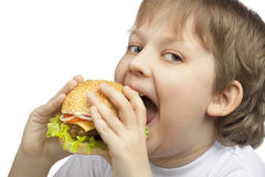 Boy with burger Royalty Free Stock Photo