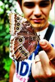 Boy with butterfly. This is a photo of boy holding butterfly stock photo