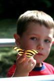 Boy with butterfly. Selective focus portrait of a butterfly on a child's finger Stock Images