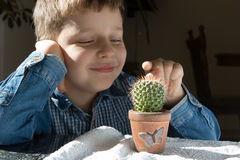 Boy with cactus Royalty Free Stock Photos