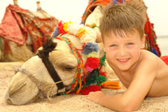 The boy and camel Stock Photography