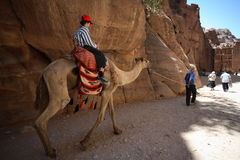Boy on Camel in Petra, Jordan. Boy on camel in the ancient deserted city of Petra, Jordan Royalty Free Stock Image