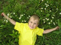 Boy and camomiles Royalty Free Stock Images