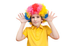 The boy in the carnival clown wig Stock Image