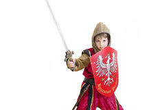 Boy with carnival costume Stock Images
