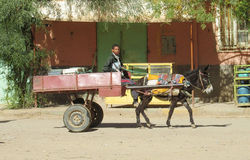 A boy in the carriage with donkey Stock Images