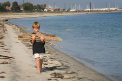 Boy Carries Firewood. A young boy exploring picks up firewood while walking along the bay beach Royalty Free Stock Images