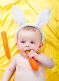 Boy with a carrot in his hand Royalty Free Stock Photo