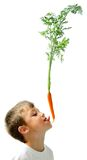 Boy with carrots Royalty Free Stock Photo
