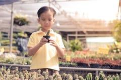Boy carry cactus Stock Photos