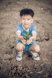 Boy carry little seedling Royalty Free Stock Photo